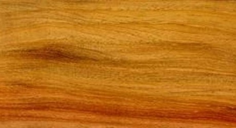 Wr Timbers Species New Guinea Rosewood